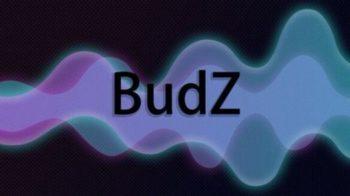 oneplus budz