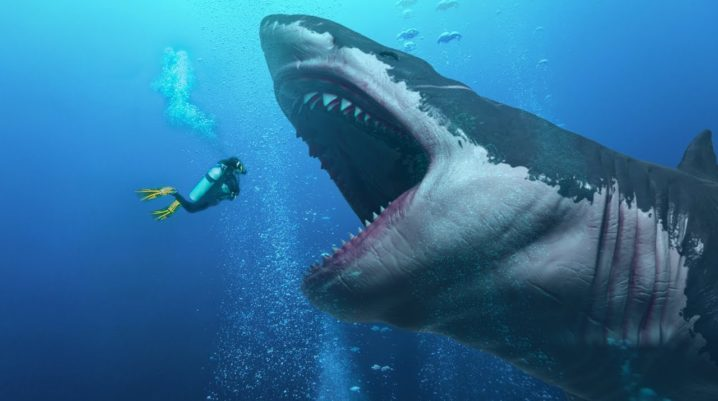 True size of history's largest shark revealed